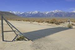 Garde de bétail dans la route sur le ranch dans l'ouest américain Image libre de droits