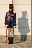 Garde de palais avec l'ombre Photo libre de droits