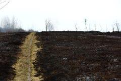 Garde pendant la lutte contre l'incendie sur les prés secs image libre de droits