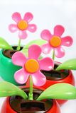 Garden. Sunshine fragrance in full bloom in the colorful beautiful Royalty Free Stock Images