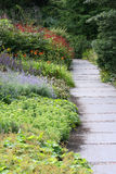 Garden. A beautiful colorful garden with a path and flowering plants and shrubs Stock Image