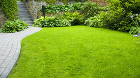 Garden. Stone path with grass growing up between the stones stock photos