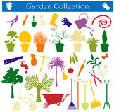 Garden Royalty Free Stock Image