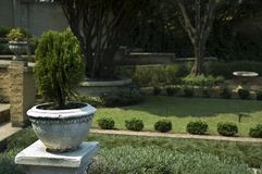Garden. Beautiful relaxing garden area with narrow focus on the pot plant Stock Photos