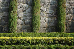 Garden. A wall Garden with cipress and bushes Stock Photo