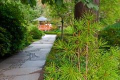 Garden. A japanese garden with the wooden bridge Stock Photography