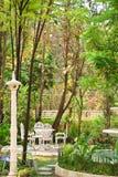 Garden. Back garden place to relax in a comfortable holiday Stock Photos