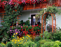 Garden. Filled with flowers in various colors Stock Photo