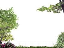 Garden. Populated by plants and trees isolated on white background Stock Images