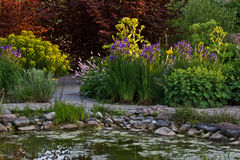 Garden. Colorful garden with flowers, bushes and pond Stock Photography