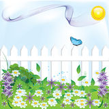 Garden. Beautiful illustration with flowers and grass Stock Photography