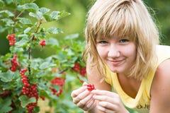 In garden Stock Images