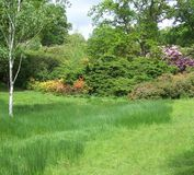 Garden. On display at Exbury s (UK Royalty Free Stock Image