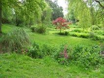 Garden. S on display at Exbury s (UK Royalty Free Stock Photos