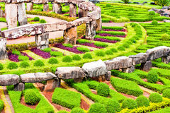 The Garden. Is a planned space, usually outdoors, set aside for the display, cultivation, and enjoyment of plants and other forms of nature Stock Photos