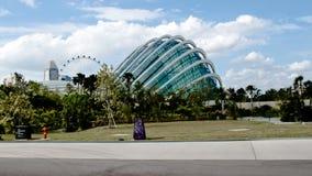Garden. Beautiful Garden by the bay tropical  garden in Singapore Stock Photos