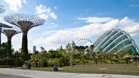 Garden. Beautiful Garden by the bay tropical garden in Singapore royalty free stock image