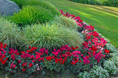 Garden. A flower garden and grass Royalty Free Stock Photos