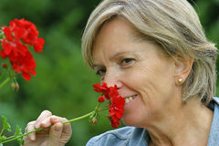 garden Στοκ φωτογραφίες με δικαίωμα ελεύθερης χρήσης