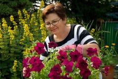 garden Στοκ εικόνες με δικαίωμα ελεύθερης χρήσης