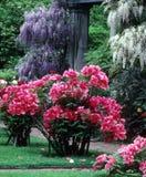 Garden. A garden with bluming flowers in the summer months Stock Photos