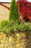 Garden. A wall Garden with cipress and bushes Royalty Free Stock Photo
