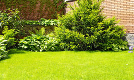 Garden. A wall Garden with cipress and bushes Royalty Free Stock Photography