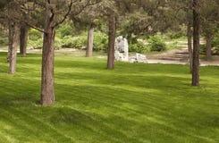 Garden. Trees and sun in the garden royalty free stock photos
