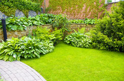 Garden. A wall Garden with cipress and bushes Stock Image