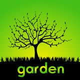 Garden Royalty Free Stock Photography