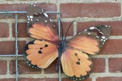 Monarch butterfly accessory. Monarch butterfly on a wall of stone royalty free stock photo