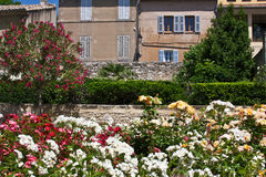 Garden in Aix Royalty Free Stock Photo