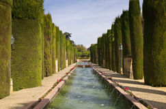 Garden of the Alcazar de los Reyes Cristianos Stock Image