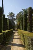 Garden Alcazar Palace Stock Photography