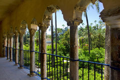 Garden of  Alcazar Palace, Seville Royalty Free Stock Photo