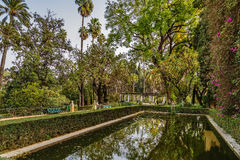 Garden in Alcazar of Seville, Spain Stock Images