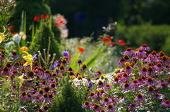 Garden Alive with Color royalty free stock photography