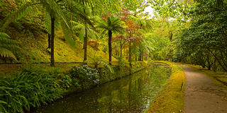 Garden alley along the water stream. royalty free stock photography