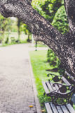 Garden and alone Royalty Free Stock Photo