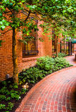 Garden along a brick walkway in downtown Lancaster, Pennsylvania Royalty Free Stock Images