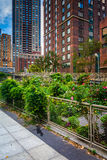 Garden along a path in Battery Park City, Manhattan, New York. Royalty Free Stock Image
