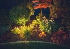 Garden Ambient Lighting. Backyard Garden Illumination System. Colorful Plants at Night stock image