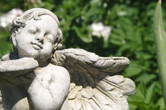 Garden angel Stock Photo