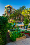 Garden and apartment building in San Diego, California. stock photography