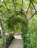 Garden Arbor. With plants growing up around it Stock Image