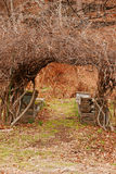 Garden Arch. Bare branches form a natural arbor arch over a garden path with stone benches in background Stock Images