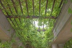 Garden archway pergola, Wroclaw Royalty Free Stock Photography