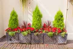 Garden arrangement of planters Royalty Free Stock Photos
