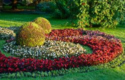 Garden art. The city park city of Stavropol is a fine example of art park. Flower carpets in different colors and shapes, striking in its beauty Royalty Free Stock Photo