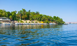 The garden of Aswan Royalty Free Stock Photos